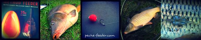 pêche au method feeder
